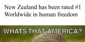 NewZealandfreestcountry