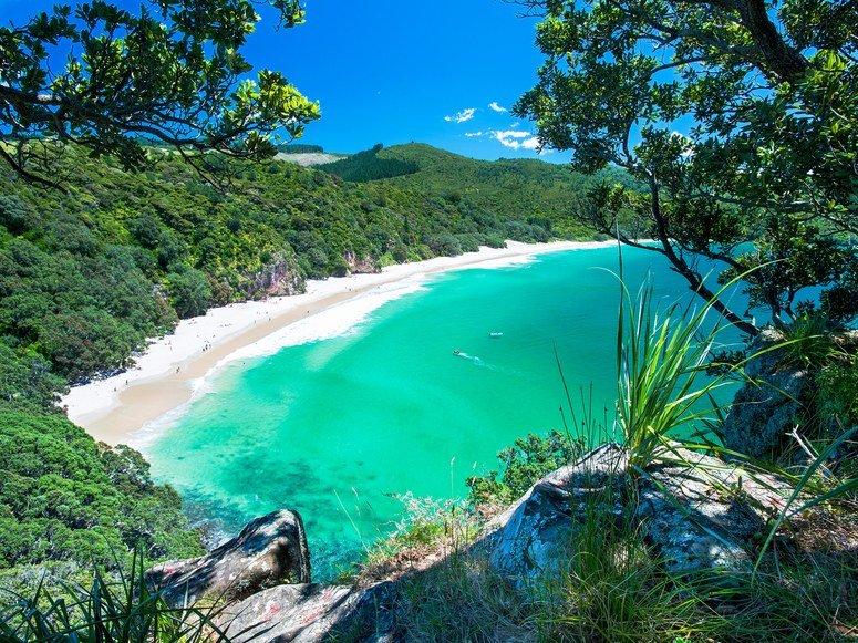 NZ Best Beaches Chums Bay