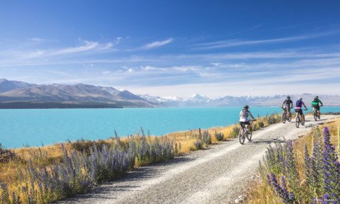 7 Fantastic New Zealand Cycle Rides